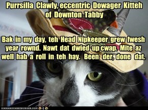 Purrsilla  Clawly, eccentric  Dowager  Kitteh  of  Downton  Tabby