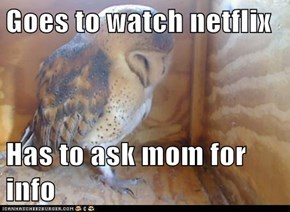 Goes to watch netflix  Has to ask mom for info