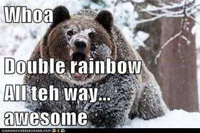 Whoa Double rainbow All teh way... awesome