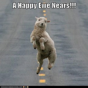 A Happy Ewe Nears!!!