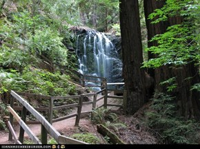 Berry Creek Falls in Big Basin State Park
