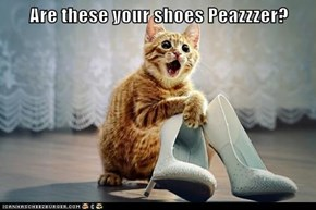 Are these your shoes Peazzzer?