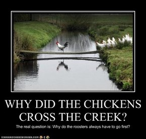 WHY DID THE CHICKENS CROSS THE CREEK?