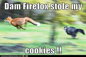 Darn Firefox stole my  cookies !!
