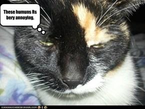 Annoying Humuns.