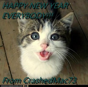 HAPPY NEW YEAR EVERYBODY!!!  From CrashedMac73