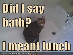 Did I say bath?  I meant lunch