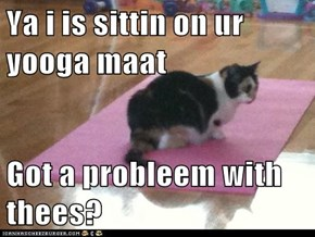 Ya i is sittin on ur yooga maat  Got a probleem with thees?