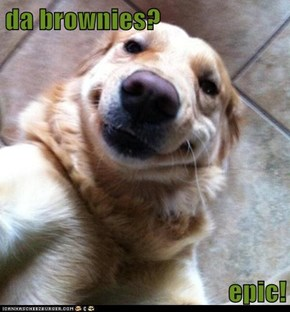 da brownies?  epic!