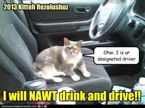 2013 Kitteh Rezolushuz