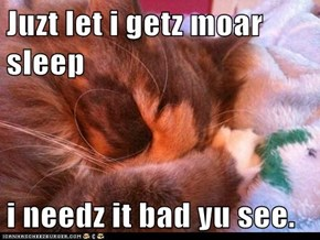 Juzt let i getz moar sleep  i needz it bad yu see.