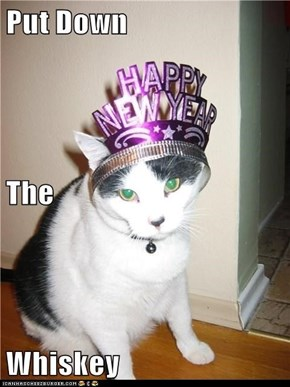 New Year Crazies seems pretty accurate...