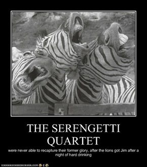 THE SERENGETTI QUARTET