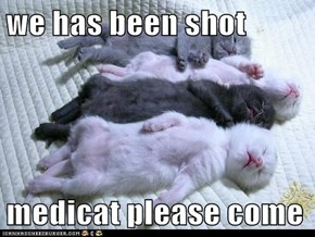 we has been shot  medicat please come