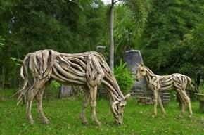 Driftwood WIN