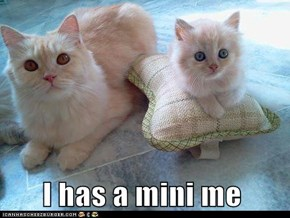 I has a mini me