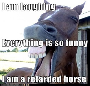 I am laughing Everything is so funny I am a retarded horse