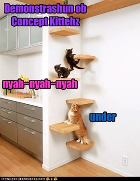 Demonstrashun ob Concept Kittehz