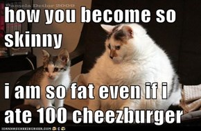 how you become so skinny  i am so fat even if i ate 100 cheezburger