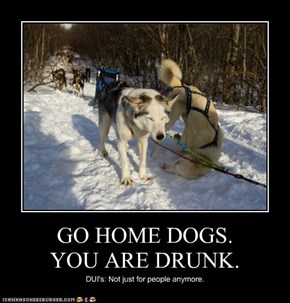 GO HOME DOGS.           YOU ARE DRUNK.