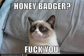 HONEY BADGER?  FUCK YOU.