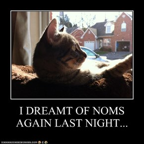 I DREAMT OF NOMS AGAIN LAST NIGHT...