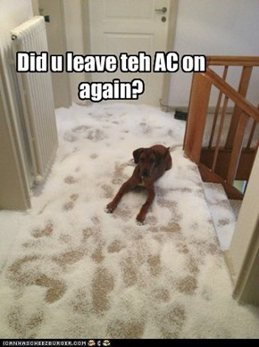Did u leave teh AC on again?