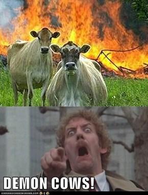 DEMON COWS!