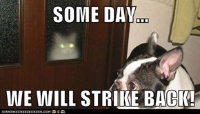SOME DAY...  WE WILL STRIKE BACK!