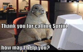 Thank you for calling Sprint how may I help you?