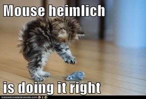 Mouse heimlich  is doing it right