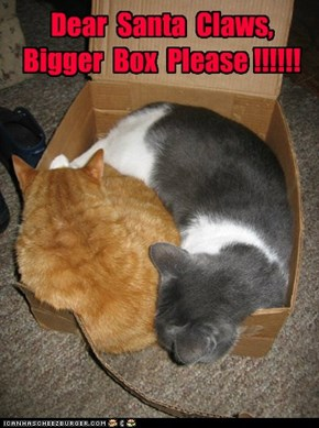 Dear  Santa  Claws, Bigger  Box  Please !!!!!!