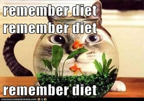 remember diet remember diet  remember diet