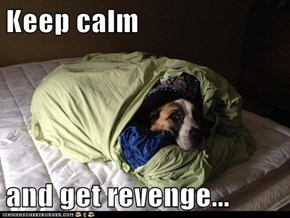 Keep calm  and get revenge...