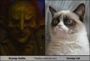Grumpy Goblin Totally Looks Like Grumpy Cat