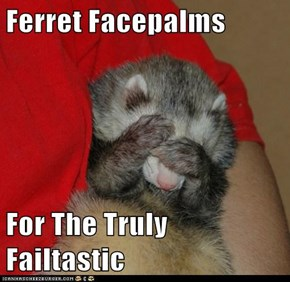 Ferret Facepalms  For The Truly Failtastic