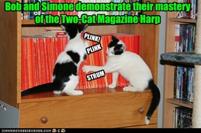 Bob and Simone demonstrate their mastery of the Two-Cat Magazine Harp