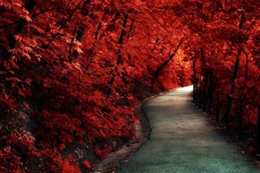Fiery-Red Path