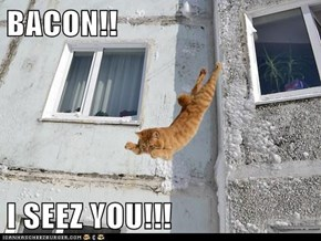 BACON!!  I SEEZ YOU!!!