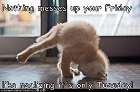 Nothing messes up your Friday  like realizing it's only Tuesday!