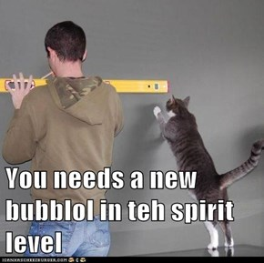 You needs a new bubblol in teh spirit level