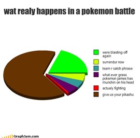 wat realy happens in a pokemon battle