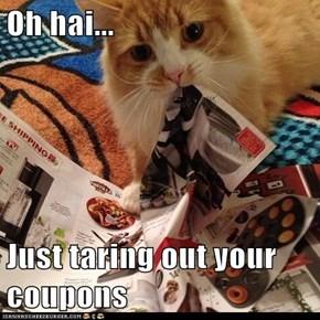 Oh hai...  Just taring out your coupons