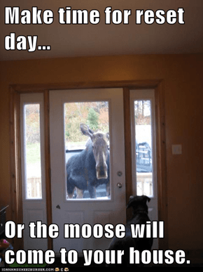 Make time for reset day...  Or the moose will come to your house.