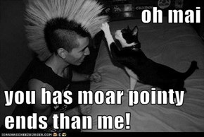 oh mai  you has moar pointy ends than me!