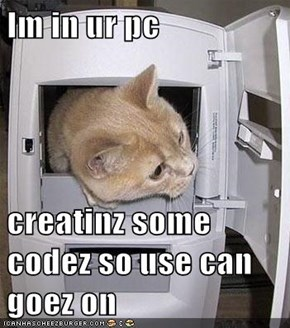 Im in ur pc  creatinz some codez so use can goez on