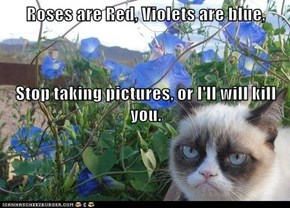 Roses are Red, Violets are blue, Stop taking pictures, or I'll will kill you.
