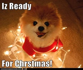 Iz Ready   For Chrstmas!