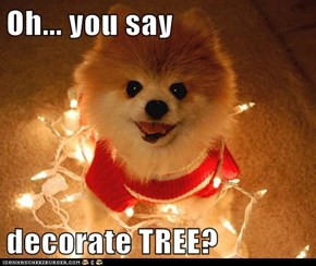 Oh... you say  decorate TREE?