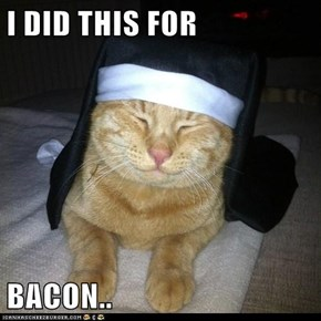 I DID THIS FOR  BACON..
